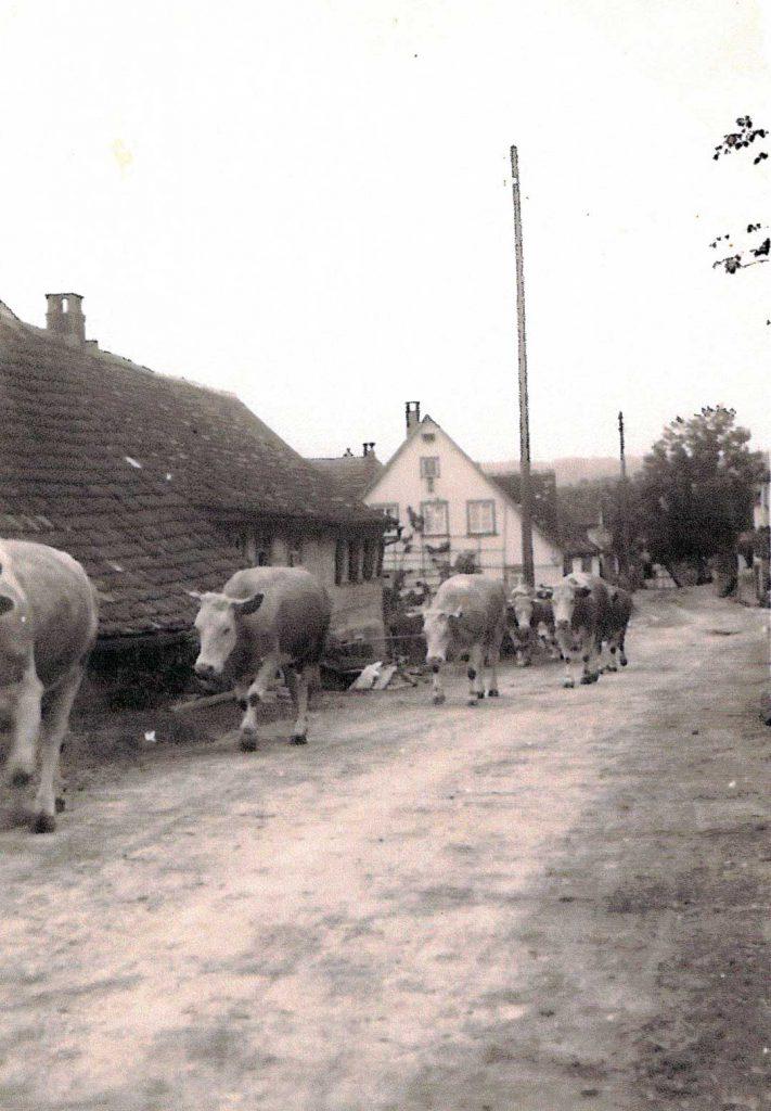 Dorfstraße in höhe des früheren Rathauses