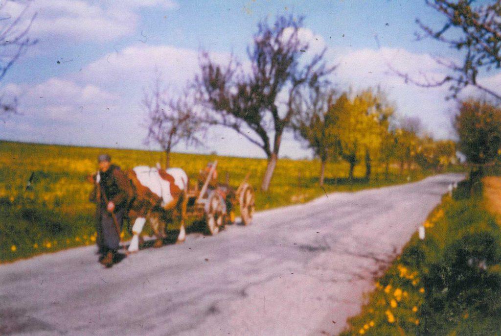 Fritz Hilpert auf der alten Straße von Gerabronn kommend